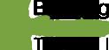 Barking Gecko logo
