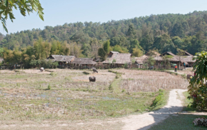 Baan Tong Luang - 5 hill tribe village