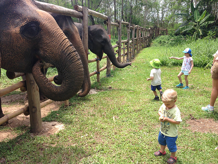 Elephant Valley is also very safe for the kiddies